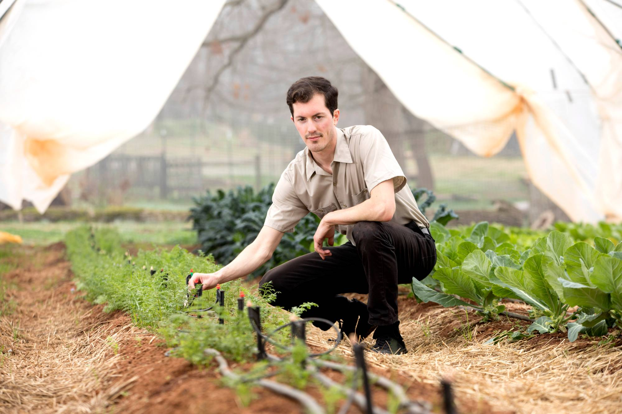 Jesse Lafian kneels near a row of crops with drip irrigation