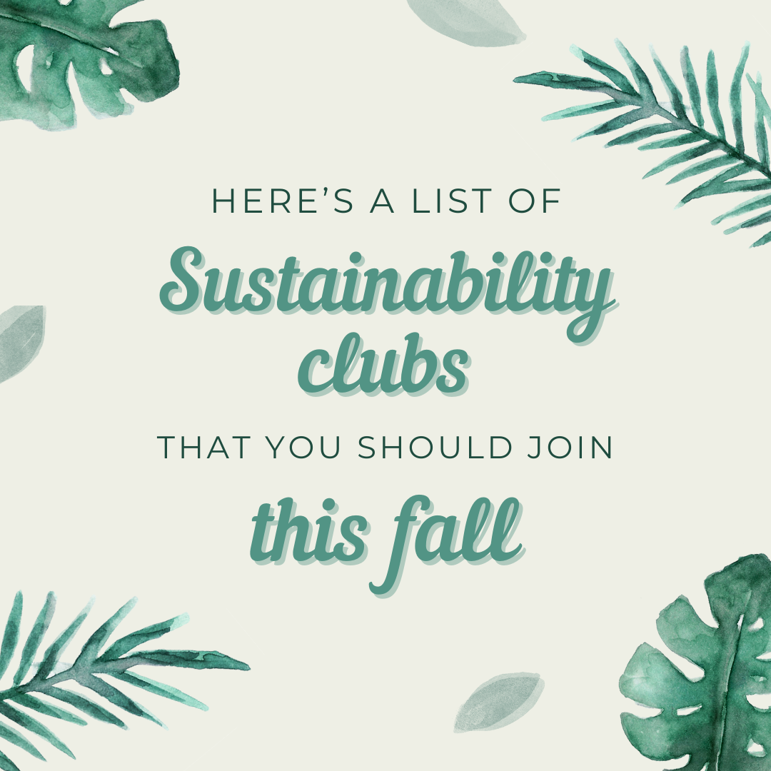 7 Sustainability Clubs at UGA to Get Involved in this Fall